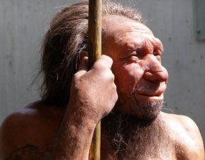 FISIOLOGIA GENERALE DELL'HOMO SAPIENS
